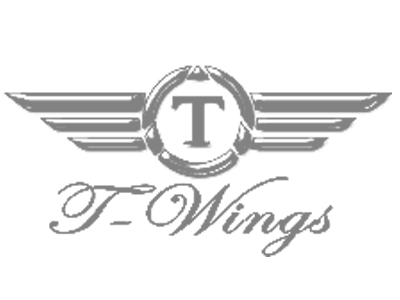 Transfer Wings